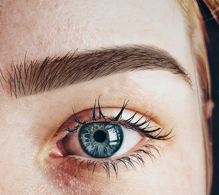brow-tint-and-tidy3